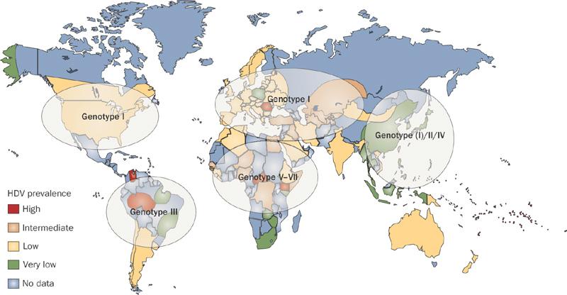 Prevalence Map
