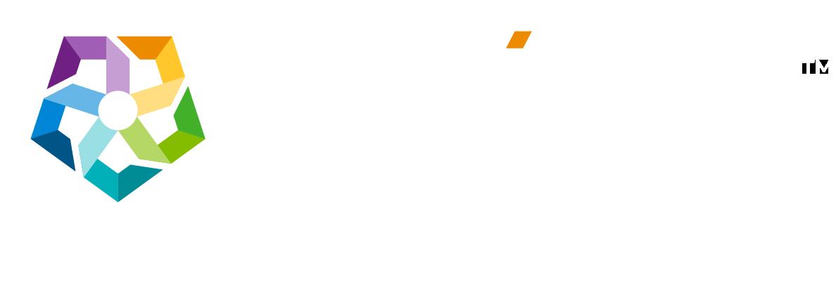 Zokinvy Logo